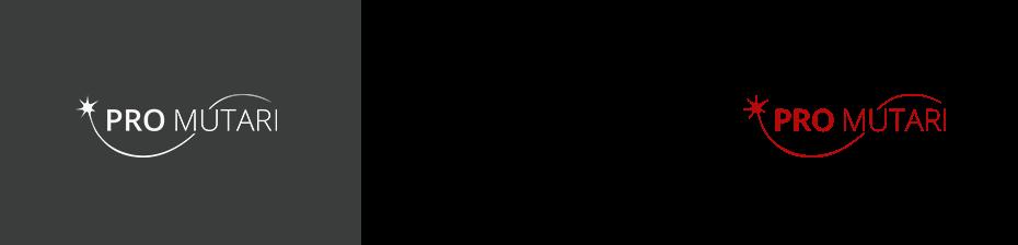 promutari-firminis-stilius-addrama-2