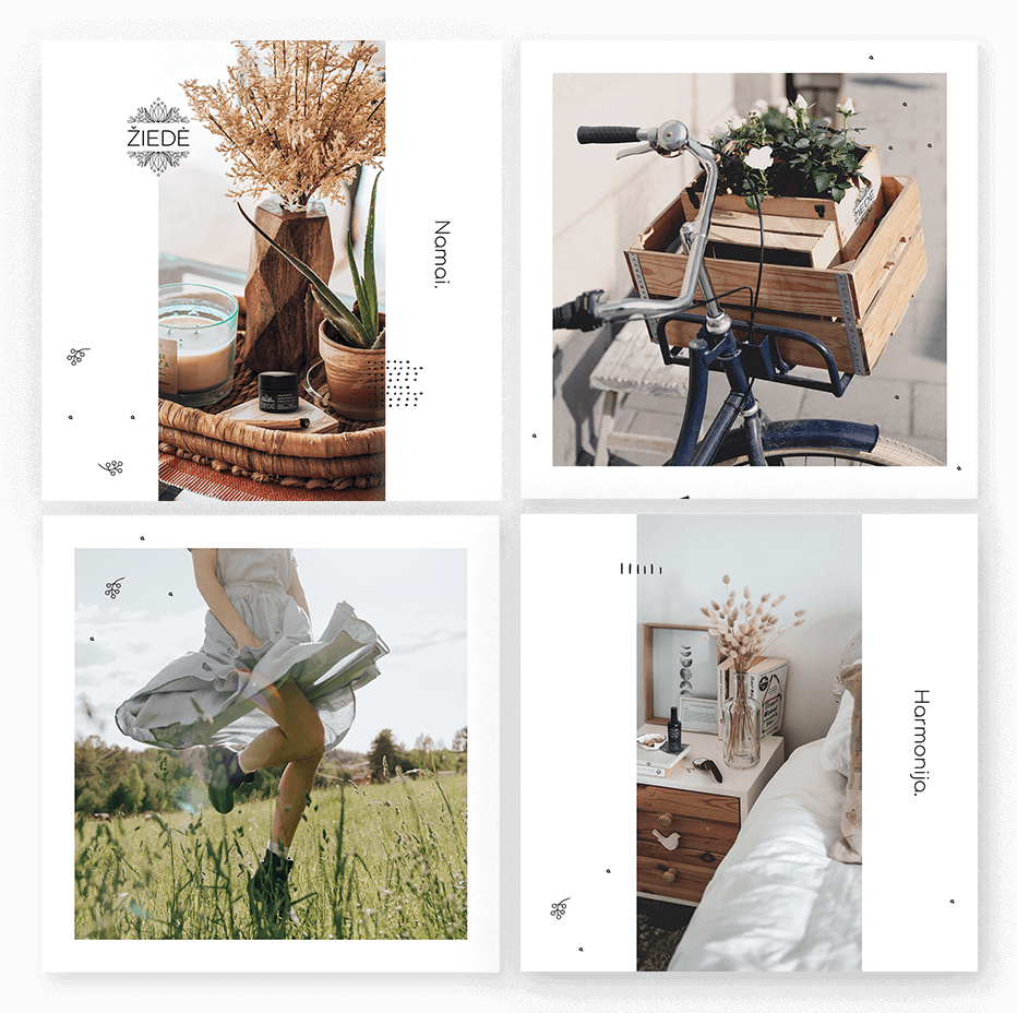 Ziede-portfolio-2-kvadratas